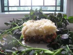 anti cancer pasture pie