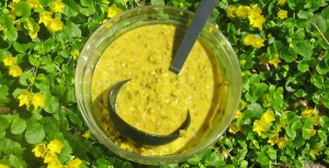 anti cancer mung bean soup