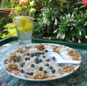 anti cancer oat bran with berries