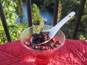 anti cancer berries cooked with cinnamon