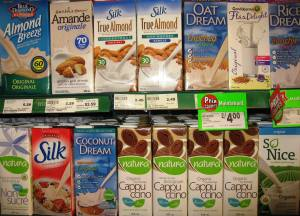milks for an anti cancer diet